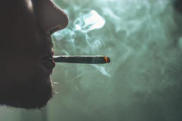 大麻に含まれる成分がもたらす6 つの効能と3つのリスク
