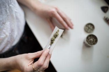 大麻に含まれる違法成分「THC」と合法成分「CBD」